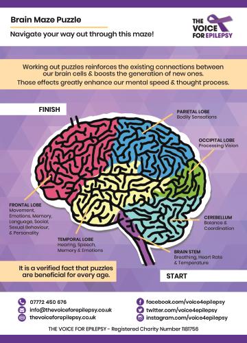 epilepsy braintease preview